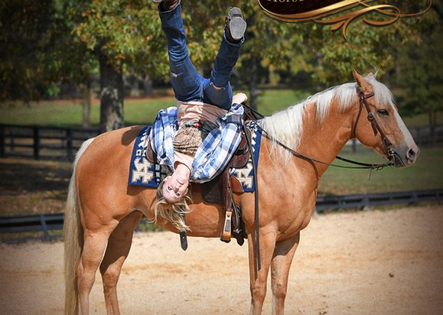 017-Val-AQHA-Golden-Palomino-For-Sale