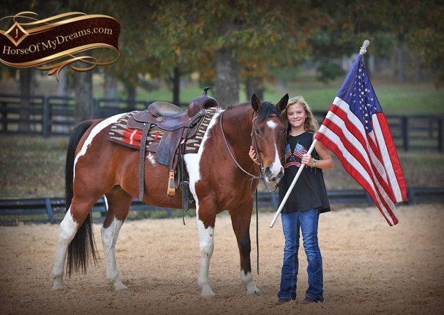 018-Rambo-Bay-Tobiano-APHA-Roping-Heeling-Gelding-Horse-For-Sale