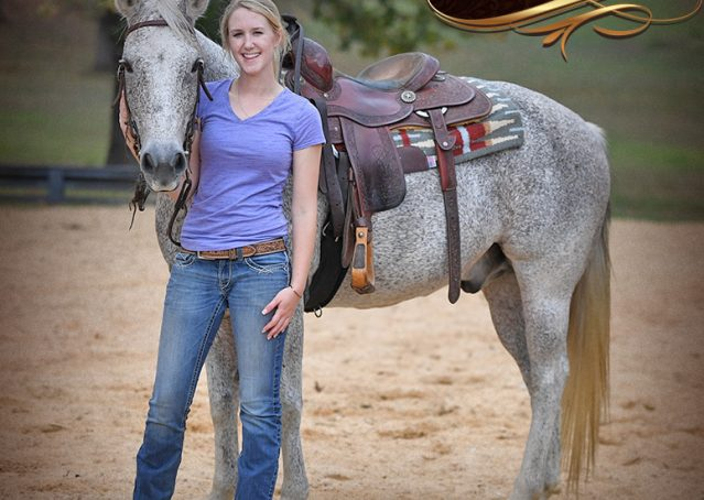019-Ike-Grey-AQHA-gelding-for-sale