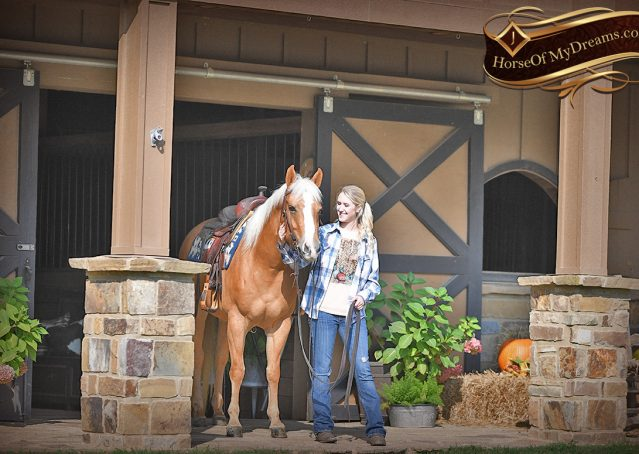 024-Val-AQHA-Golden-Palomino-For-Sale