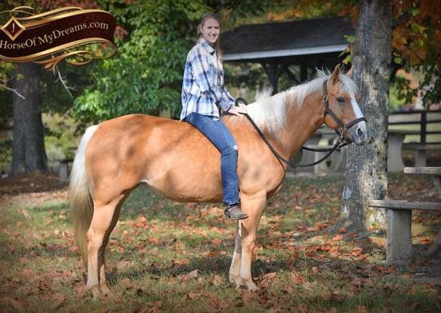 025-Val-AQHA-Golden-Palomino-For-Sale