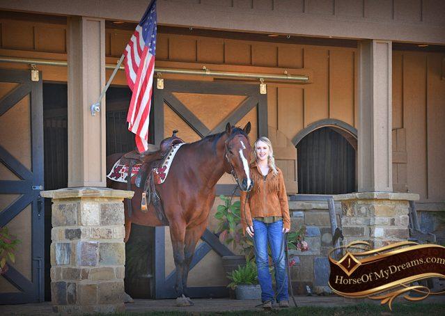 001-Harley-Bay-Quarter-Horse-Gelding-For-Sale