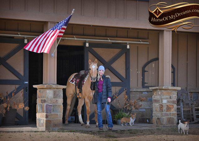 001-Sundance-AQHA-NRHA-Palomino-Quarter-Horse-Reiner-Reining-Horse-For-Sale