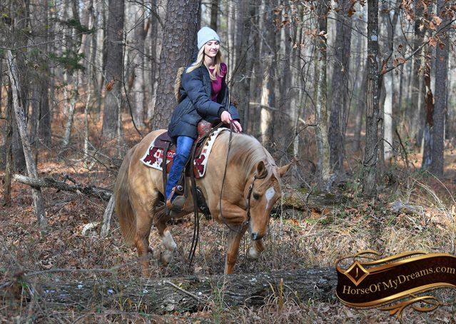 005-Sundance-AQHA-NRHA-Palomino-Quarter-Horse-Reiner-Reining-Horse-For-Sale