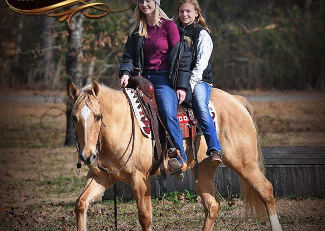 008-Sundance-AQHA-NRHA-Palomino-Quarter-Horse-Reiner-Reining-Horse-For-Sale