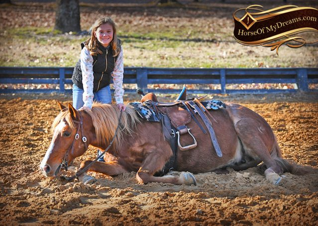 010-Junie-B-Sorrel-Quarter-Pony-Mare-For-Sale