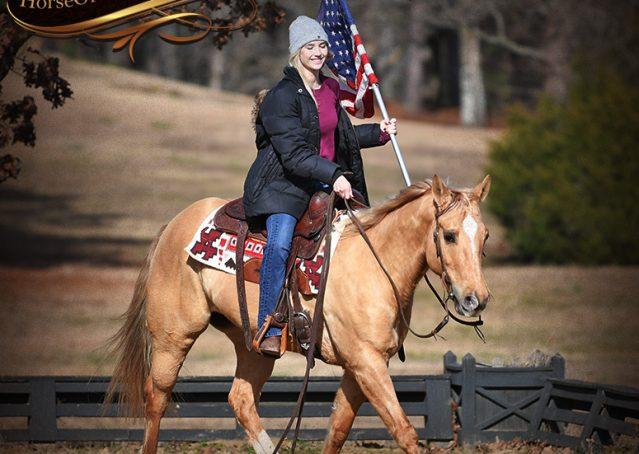 012-Sundance-AQHA-NRHA-Palomino-Quarter-Horse-Reiner-Reining-Horse-For-Sale