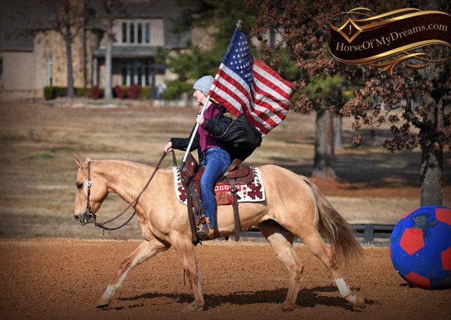 013-Sundance-AQHA-NRHA-Palomino-Quarter-Horse-Reiner-Reining-Horse-For-Sale