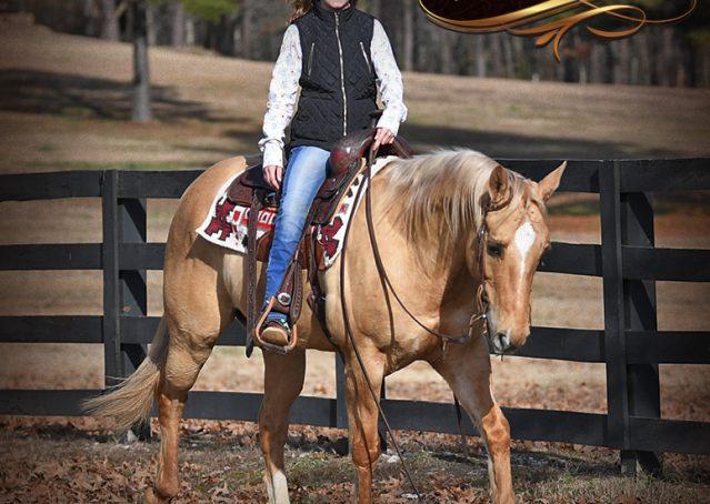 023-Sundance-AQHA-NRHA-Palomino-Quarter-Horse-Reiner-Reining-Horse-For-Sale