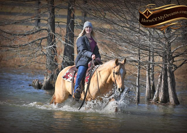 025-Sundance-AQHA-NRHA-Palomino-Quarter-Horse-Reiner-Reining-Horse-For-Sale