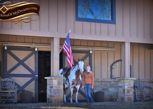 006-Ellie-Sorrel-Overo-Mounted-Shootin-Mare-Paint-For-Sale
