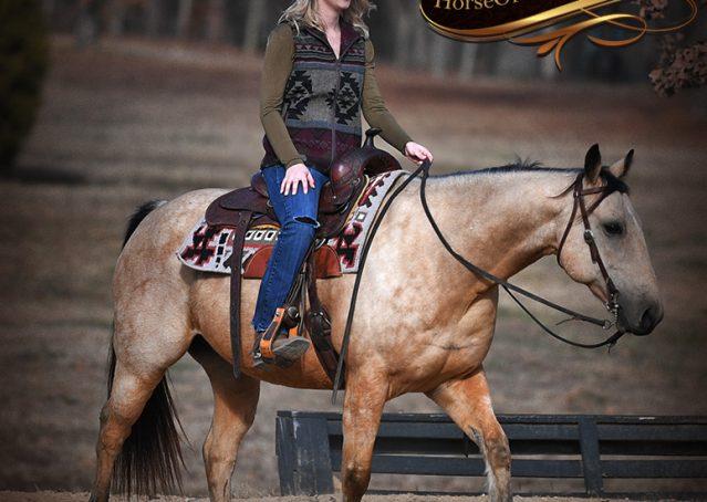 010-Oakley-Buckskin-Quarter-Horse-Gelding