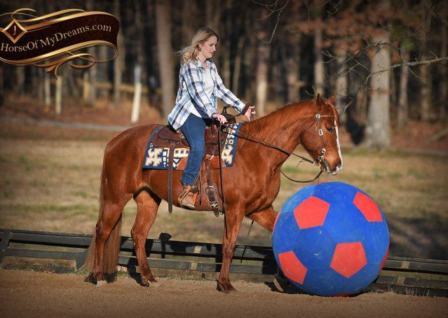 018-Dottie-Sorrel-AQHA-mare-for-sale