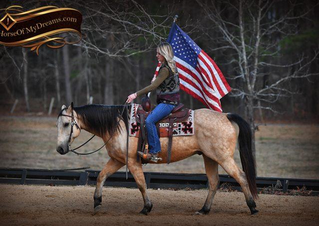 018-Oakley-Buckskin-Quarter-Horse-Gelding