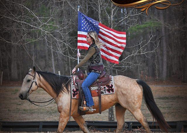 019-Oakley-Buckskin-Quarter-Horse-Gelding