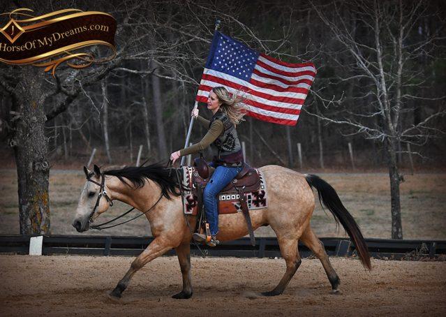 020-Oakley-Buckskin-Quarter-Horse-Gelding
