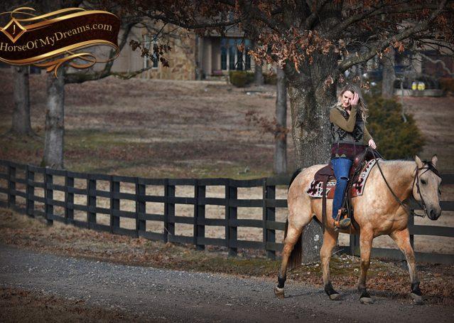 025-Oakley-Buckskin-Quarter-Horse-Gelding