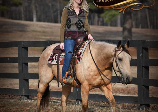 026-Oakley-Buckskin-Quarter-Horse-Gelding