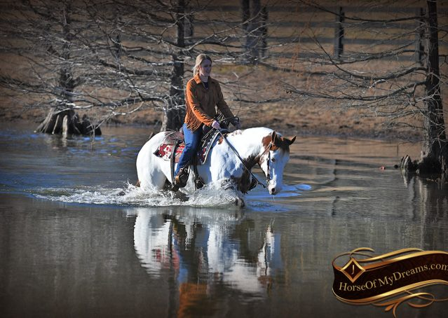 027-Ellie-Sorrel-Overo-Mounted-Shootin-Mare-Paint-For-Sale