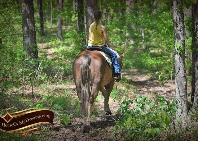 008-Wishin-Palomino-AQHA-NRHA-Quarter-Horse-For-Sale-Reiner-Reining