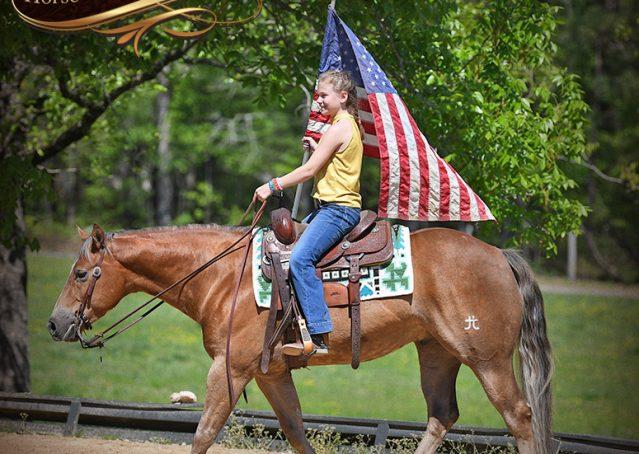012-Wishin-Palomino-AQHA-NRHA-Quarter-Horse-For-Sale-Reiner-Reining