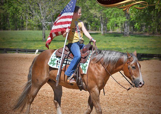 013-Wishin-Palomino-AQHA-NRHA-Quarter-Horse-For-Sale-Reiner-Reining