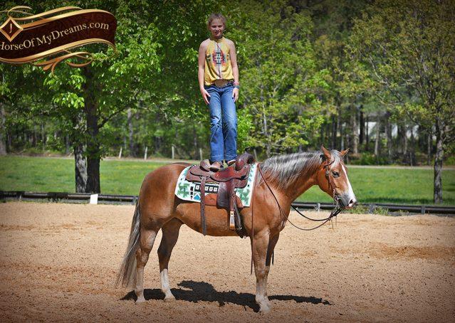 016-Wishin-Palomino-AQHA-NRHA-Quarter-Horse-For-Sale-Reiner-Reining