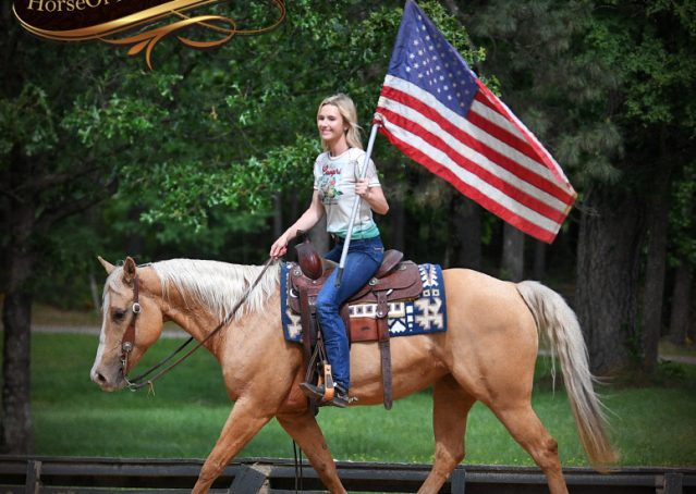 005-Montana-AQHA-Palomino-Mare-Voodoo-Dr-Reining-Reiner-for-sale-trails-parades