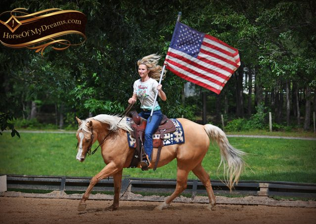 006-Montana-AQHA-Palomino-Mare-Voodoo-Dr-Reining-Reiner-for-sale-trails-parades