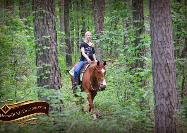 006-Trinity-AQHA-Sorrel-NRHA-Reiner-Reining-Ranch-Riding-Trail-Gelding-For-Sale