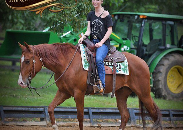 008-Trinity-AQHA-Sorrel-NRHA-Reiner-Reining-Ranch-Riding-Trail-Gelding-For-Sale