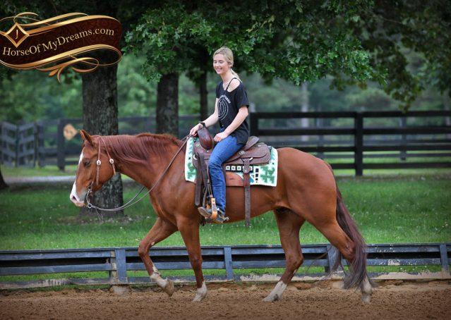 009-Trinity-AQHA-Sorrel-NRHA-Reiner-Reining-Ranch-Riding-Trail-Gelding-For-Sale