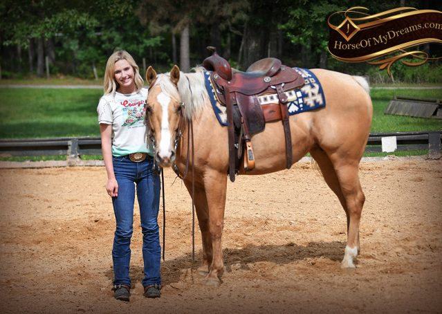 010-Montana-AQHA-Palomino-Mare-Voodoo-Dr-Reining-Reiner-for-sale-trails-parades
