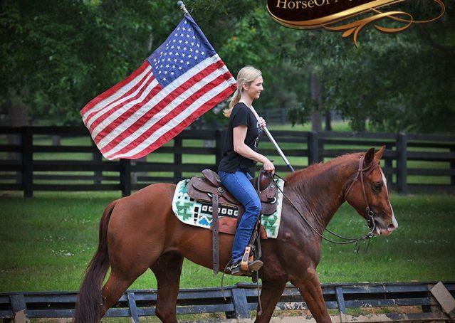 012-Trinity-AQHA-Sorrel-NRHA-Reiner-Reining-Ranch-Riding-Trail-Gelding-For-Sale
