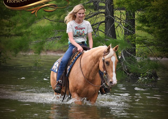 016-Montana-AQHA-Palomino-Mare-Voodoo-Dr-Reining-Reiner-for-sale-trails-parades