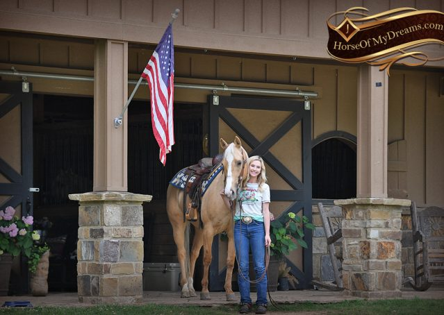 018-Montana-AQHA-Palomino-Mare-Voodoo-Dr-Reining-Reiner-for-sale-trails-parades