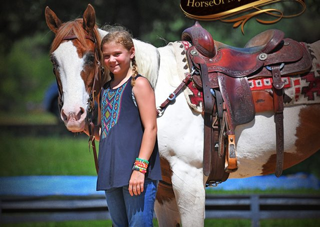 016-Cocoa-APHA-Sorrel-Tobiano-Roping-Team-heading-healing-beginner-horse-for-sale