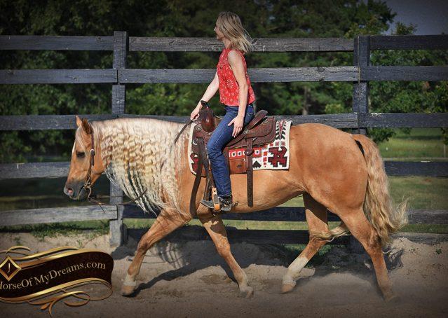 011-Tangle-Golden-Palomino-Flaxen-Blonde-Hollywoodstinseltown-reining-reiner-nrha-gelding-for-sale