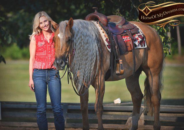 025-Tangle-Golden-Palomino-Flaxen-Blonde-Hollywoodstinseltown-reining-reiner-nrha-gelding-for-sale