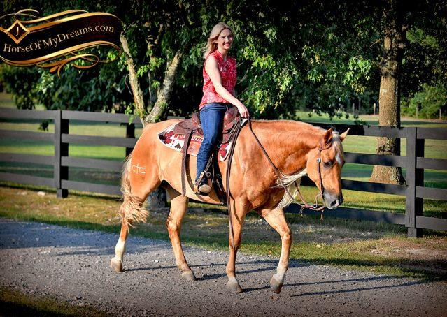 029-Tangle-Golden-Palomino-Flaxen-Blonde-Hollywoodstinseltown-reining-reiner-nrha-gelding-for-sale