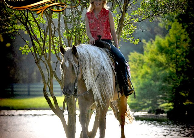 031-Tangle-Golden-Palomino-Flaxen-Blonde-Hollywoodstinseltown-reining-reiner-nrha-gelding-for-sale