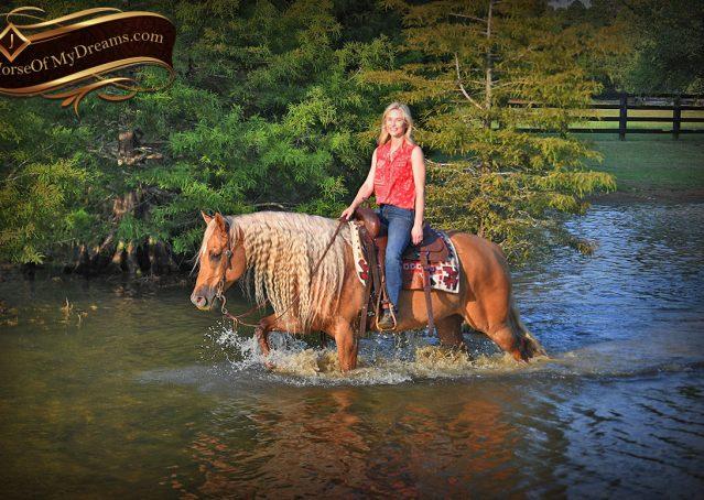 034-Tangle-Golden-Palomino-Flaxen-Blonde-Hollywoodstinseltown-reining-reiner-nrha-gelding-for-sale